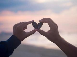 灰灰和呢呢的爱情故事