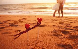 一截木头和大器晚成的爱情故事