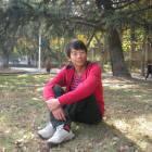 Wang鸢