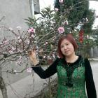 xiangxueerbb