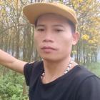 柳州鸿丰绿化园林