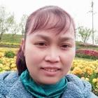 淡淡紫丁香