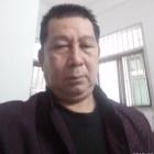 汕头龙湖鸥汀渔洲李