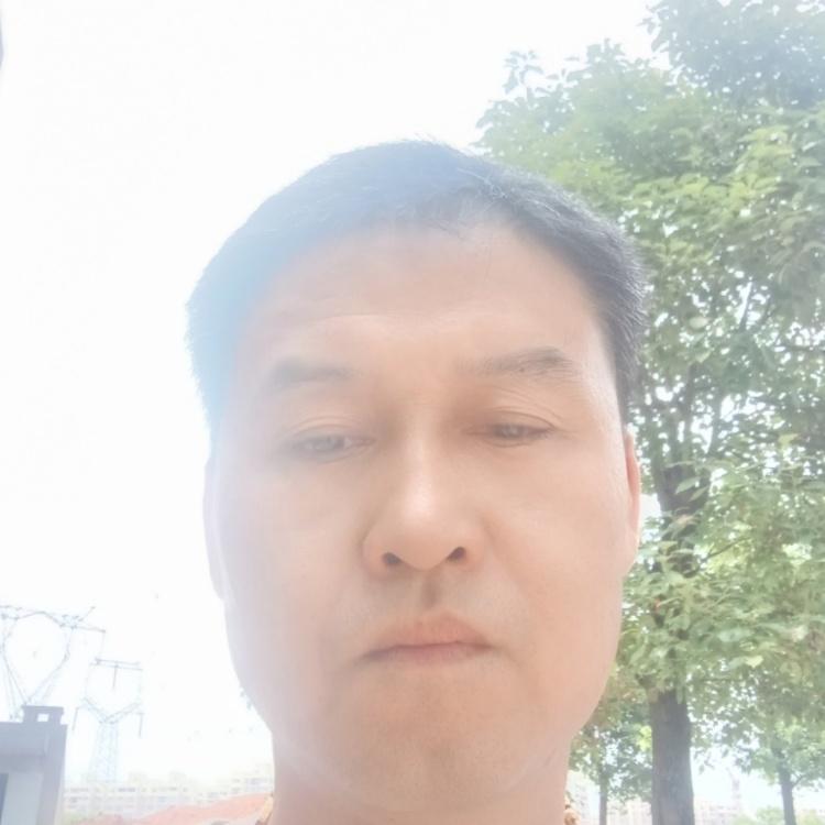 大智若愚2t