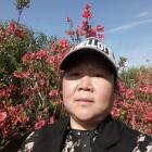 温州状元浪花朵